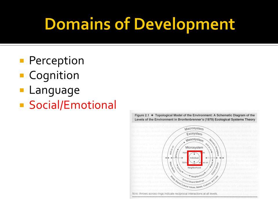  Perception  Cognition  Language  Social/Emotional