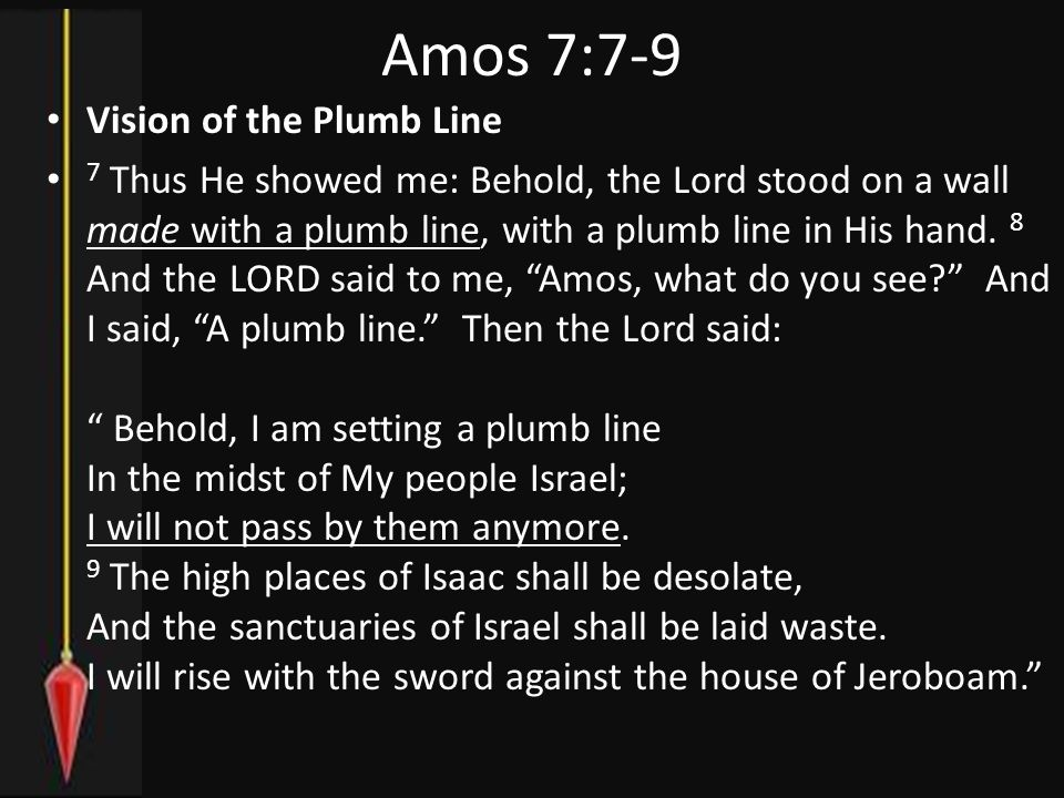 Vision of the Plumb Line 7 Thus He showed me: Behold, the Lord stood on a wall made with a plumb line, with a plumb line in His hand.