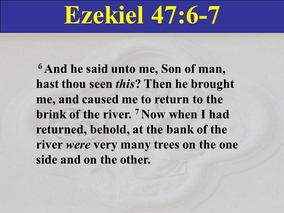 Ezekiel 47:6-7 6 And he said unto me, Son of man, hast thou seen this.