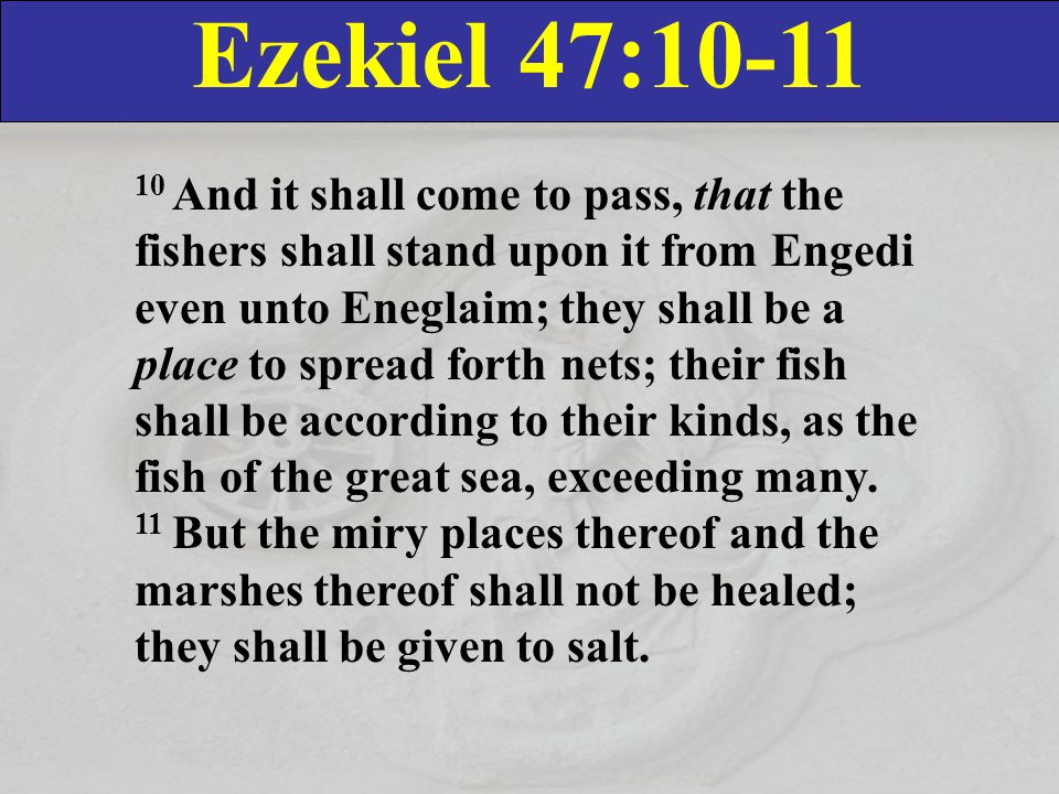 Ezekiel 47:10-11 10 And it shall come to pass, that the fishers shall stand upon it from Engedi even unto Eneglaim; they shall be a place to spread forth nets; their fish shall be according to their kinds, as the fish of the great sea, exceeding many.