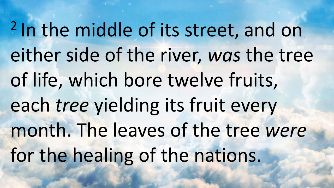 2 In the middle of its street, and on either side of the river, was the tree of life, which bore twelve fruits, each tree yielding its fruit every mon