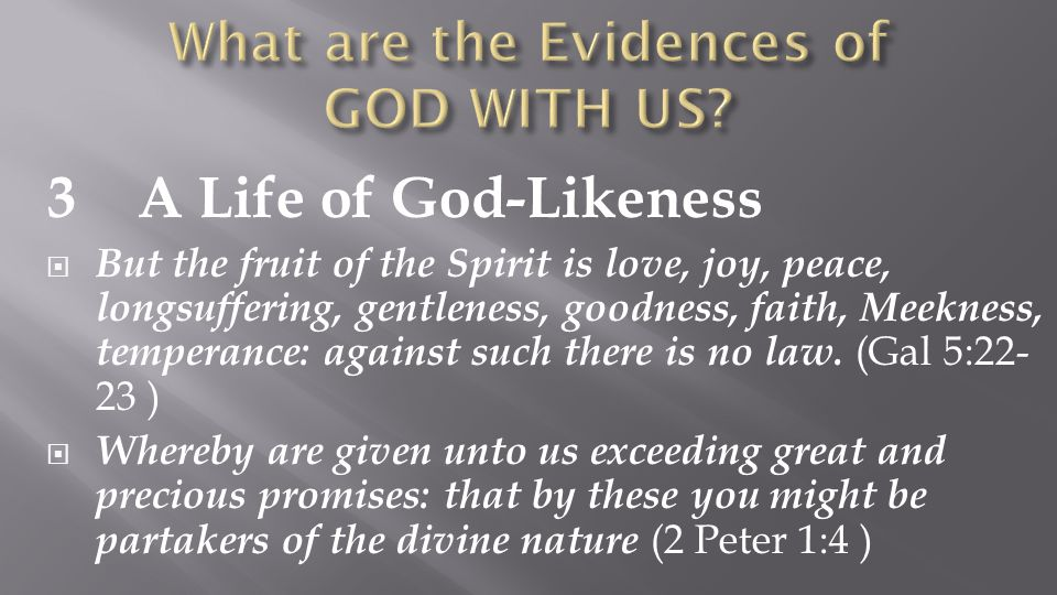 3 A Life of God-Likeness  But the fruit of the Spirit is love, joy, peace, longsuffering, gentleness, goodness, faith, Meekness, temperance: against such there is no law.