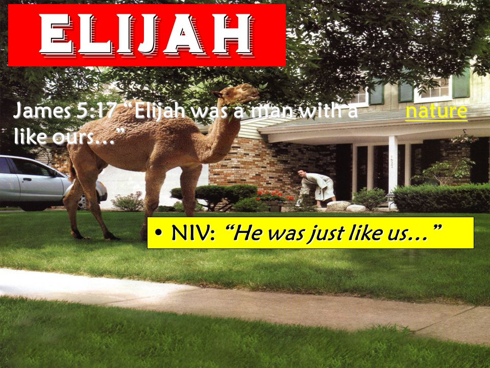 Elijah James 5:17 Elijah was a man with a nature like ours… NIV: He was just like us… NIV: He was just like us…