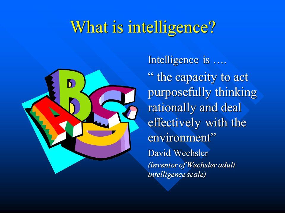 The Multi-Intelligence Man Leonardo Da Vinci excelled in Maths, linguistic, logical analytical, art, sculpture