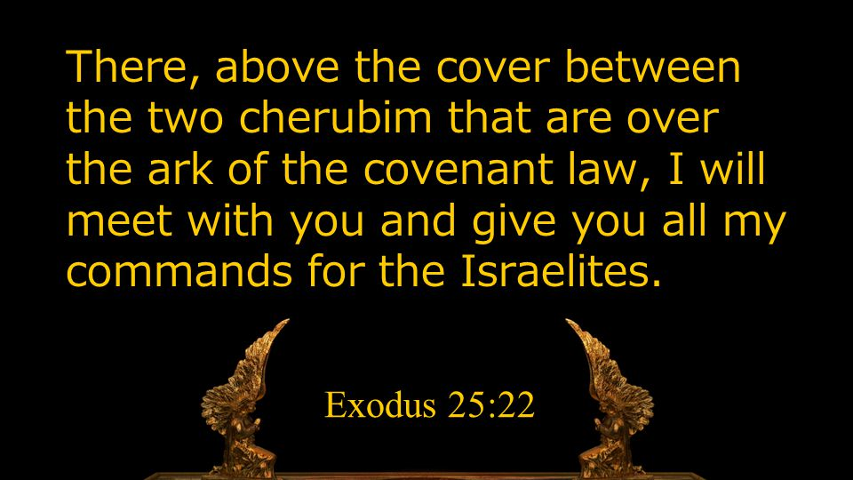 There, above the cover between the two cherubim that are over the ark of the covenant law, I will meet with you and give you all my commands for the I
