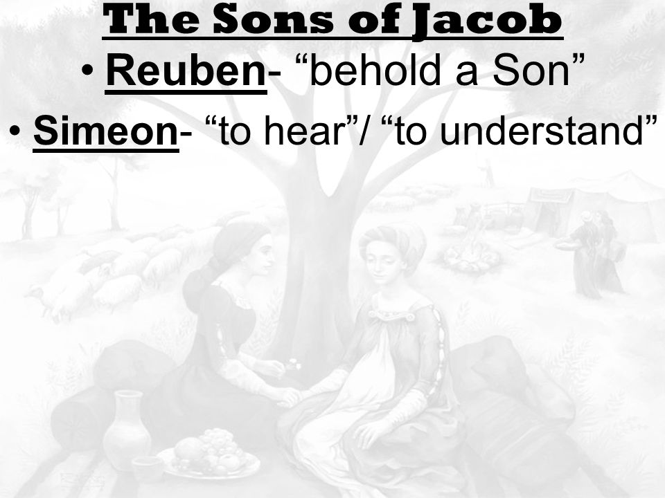 Leah and rachel The Sons of Jacob Reuben- behold a Son Simeon- to hear / to understand