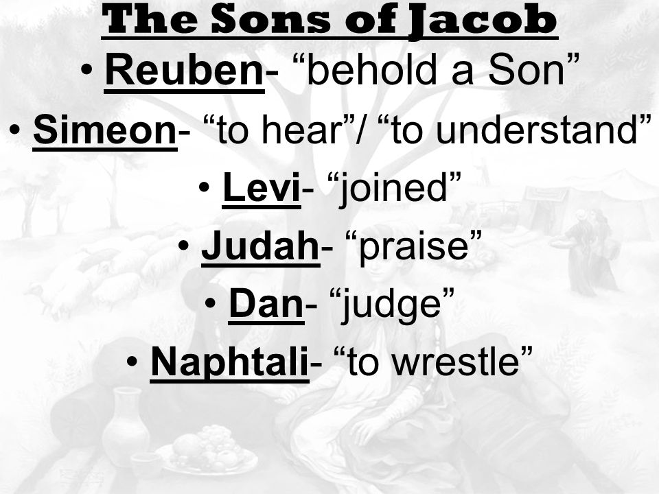 Leah and rachel The Sons of Jacob Reuben- behold a Son Simeon- to hear / to understand Levi- joined Judah- praise Dan- judge Naphtali- to wrestle