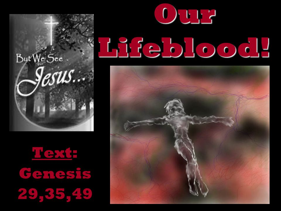 Our Lifeblood! Text: Genesis 29,35,49