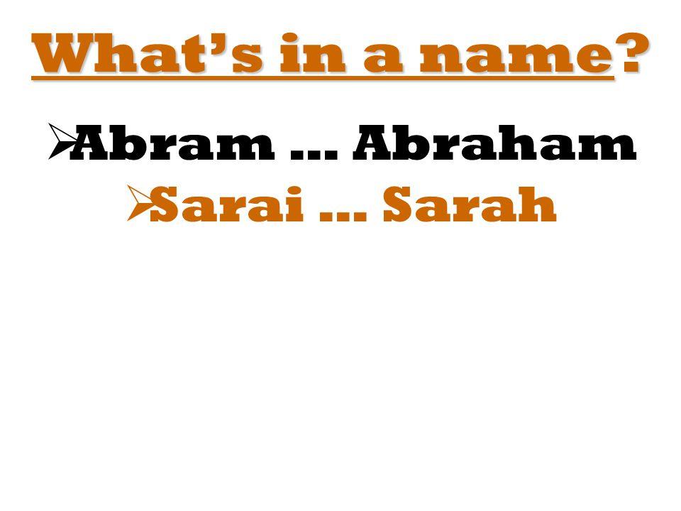  Abram … Abraham  Sarai … Sarah
