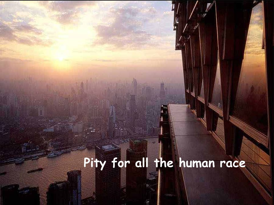 Pity for all the human race