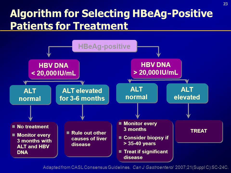 23 Algorithm for Selecting HBeAg-Positive Patients for Treatment  Rule out other causes of liver disease HBeAg-positive ALT elevated ALT normal HBV DNA > 20,000 IU/mL HBV DNA > 20,000 IU/mL HBV DNA < 20,000 IU/mL HBV DNA < 20,000 IU/mL ALT elevated for 3-6 months ALT normal  No treatment  Monitor every 3 months with ALT and HBV DNA  No treatment  Monitor every 3 months with ALT and HBV DNA  Monitor every 3 months  Consider biopsy if > 35-40 years  Treat if significant disease  Monitor every 3 months  Consider biopsy if > 35-40 years  Treat if significant disease TREAT Adapted from CASL Consensus Guidelines.