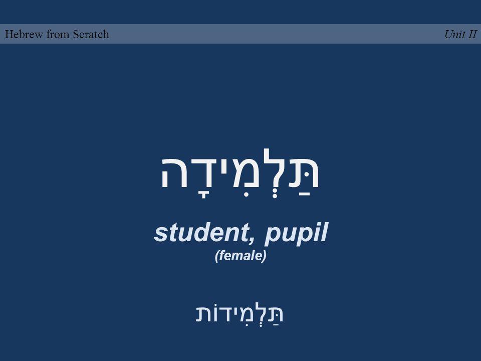 תַּלְמִידָה student, pupil (female) Unit IIHebrew from Scratch תַּלְמִידוֹת
