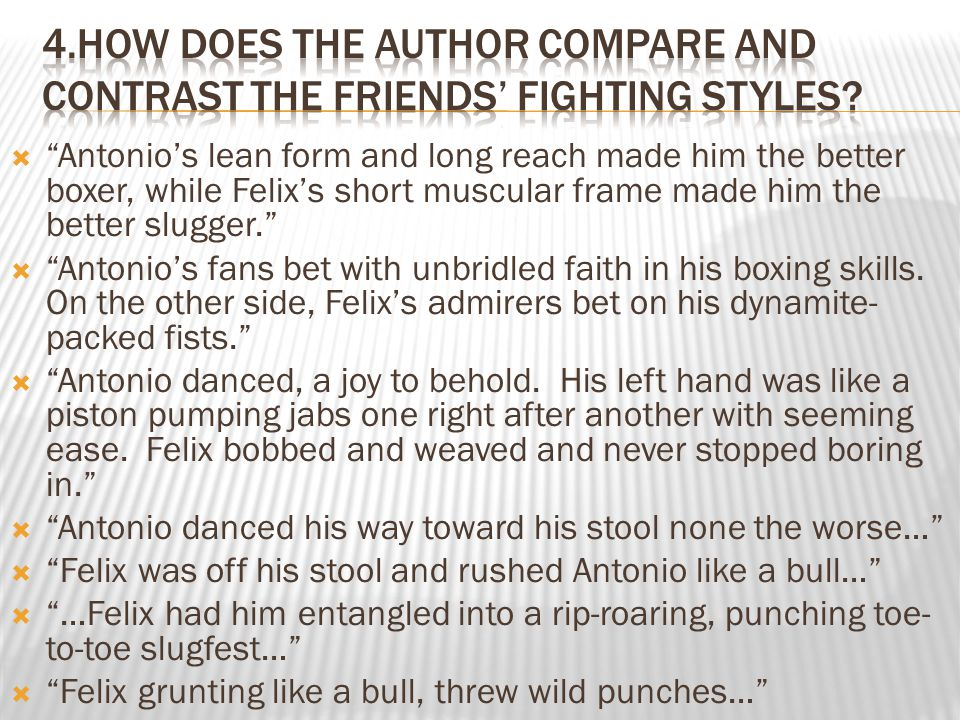 """ """"Antonio's lean form and long reach made him the better boxer, while Felix's short muscular frame made him the better slugger.""""  """"Antonio's fans be"""