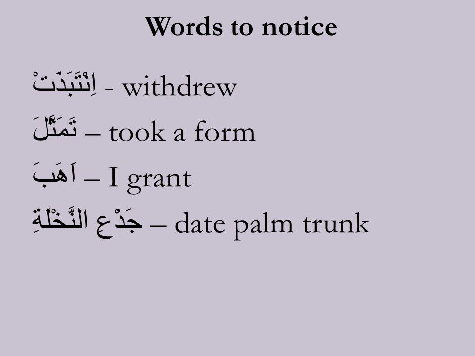 Words to notice اِنْتَبَذَتْ - withdrew تَمَثَّلَ – took a form اَهَبَ – I grant جَذْعِ النَّخْلَةِ – date palm trunk