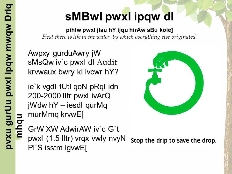Awpxy gurduAwry jW sMsQw iv`c pwxI dI Audit krvwaux bwry kI ivcwr hY.