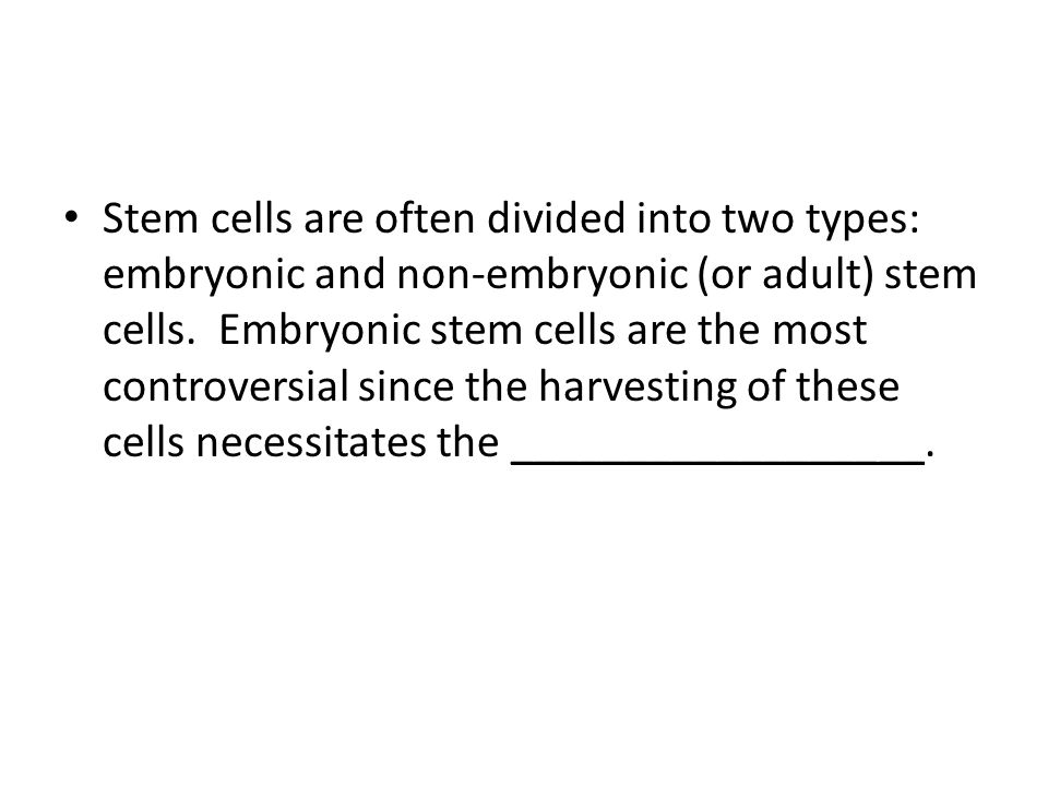 Stem cells are often divided into two types: embryonic and non-embryonic (or adult) stem cells.
