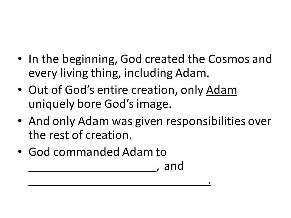 In the beginning, God created the Cosmos and every living thing, including Adam.