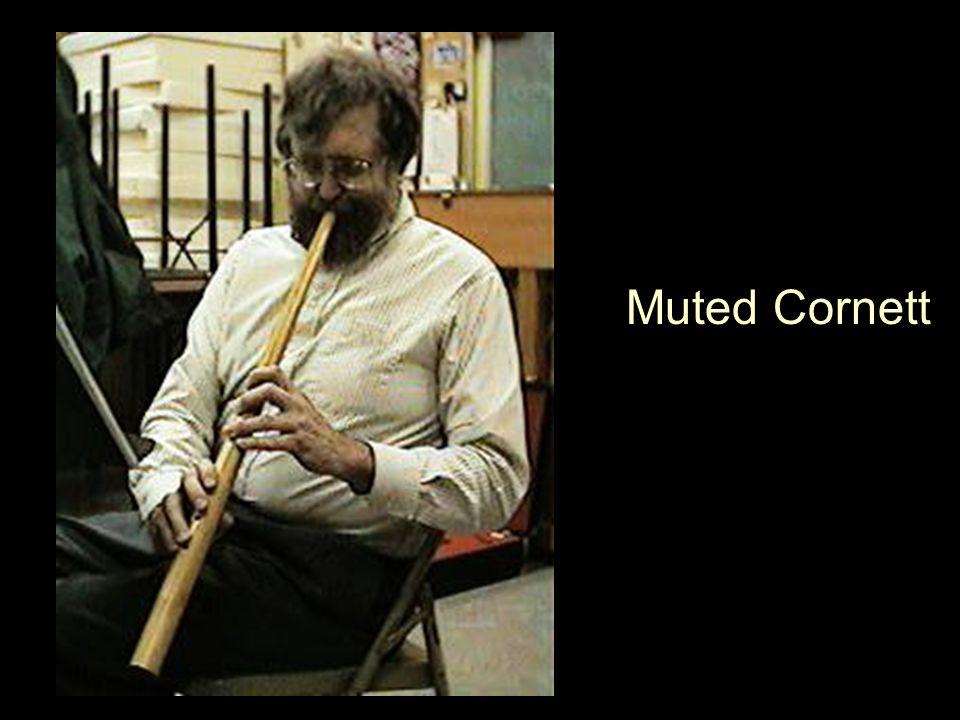 Muted Cornett