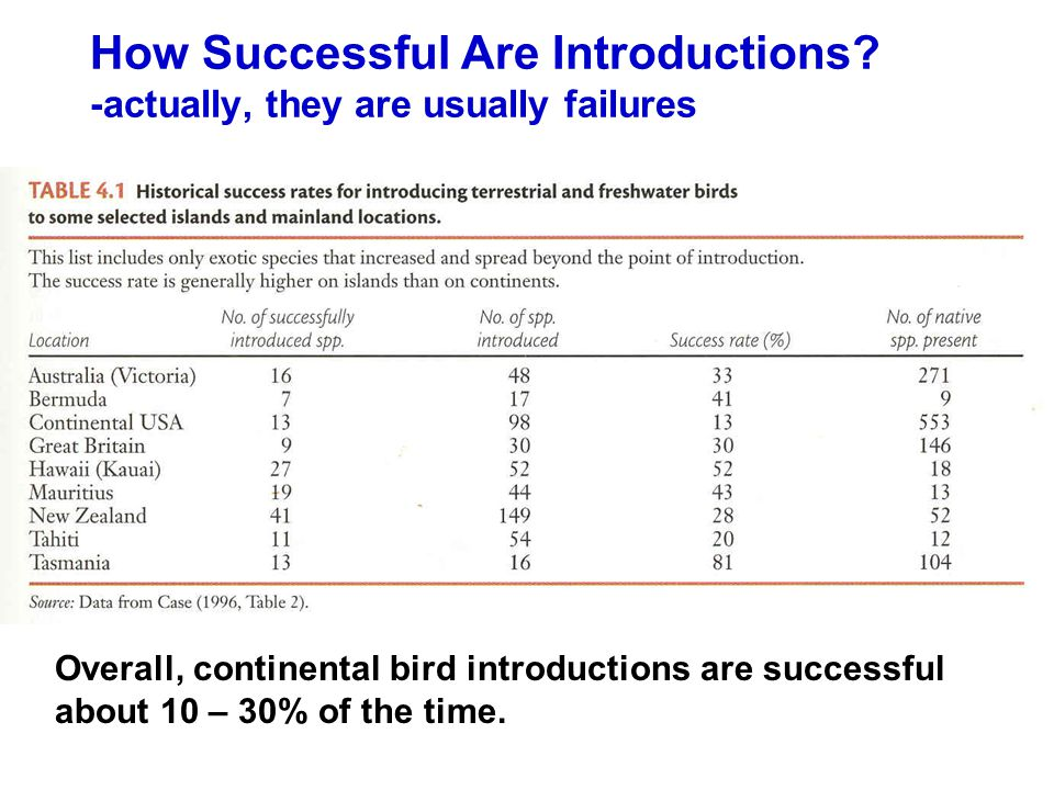 How Successful Are Introductions.