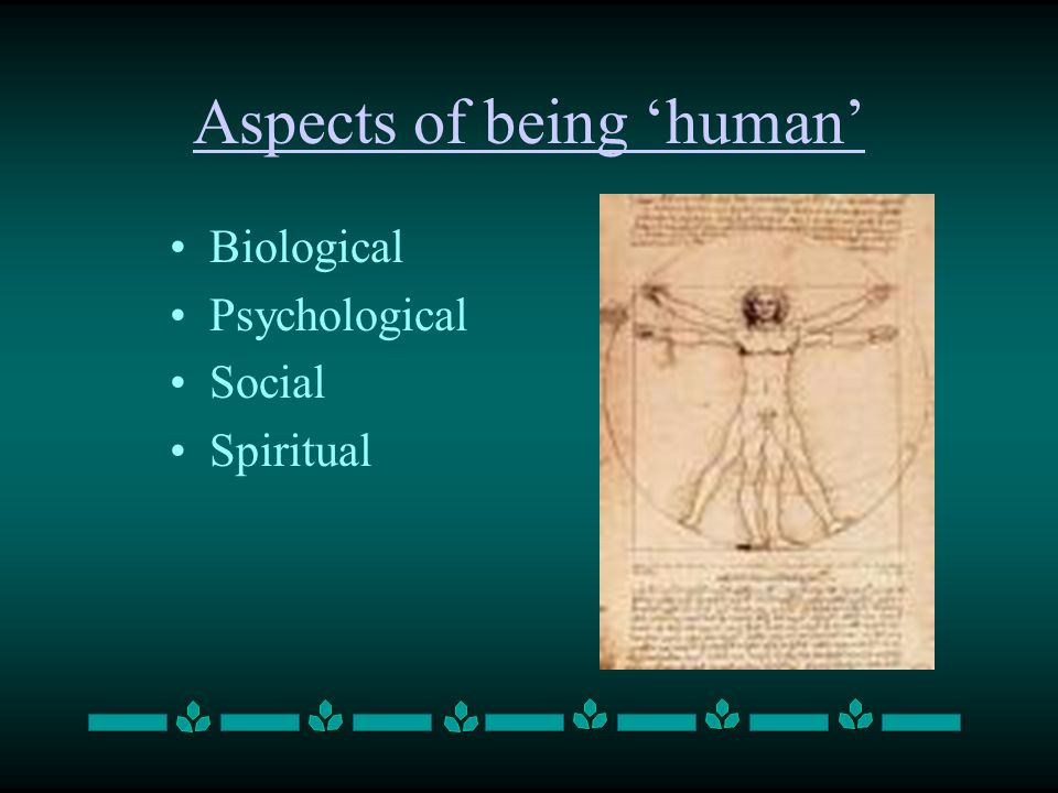 Aspects of being 'human' Biological Psychological Social Spiritual