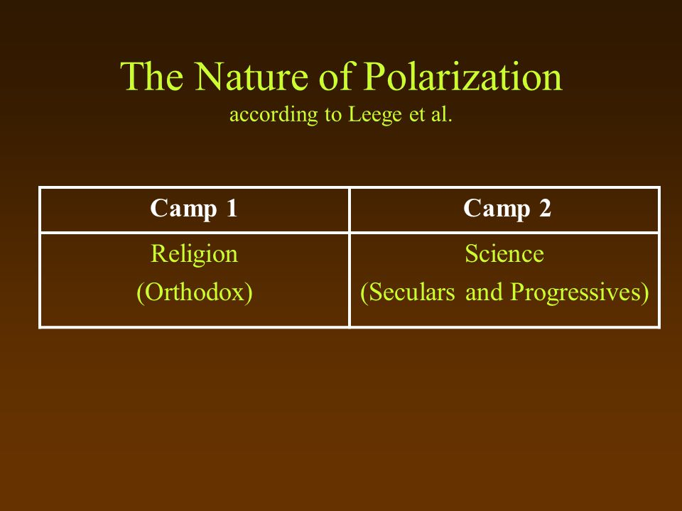 The Nature of Polarization according to Leege et al.
