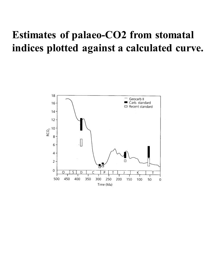 Estimates of palaeo-CO2 from stomatal indices plotted against a calculated curve.