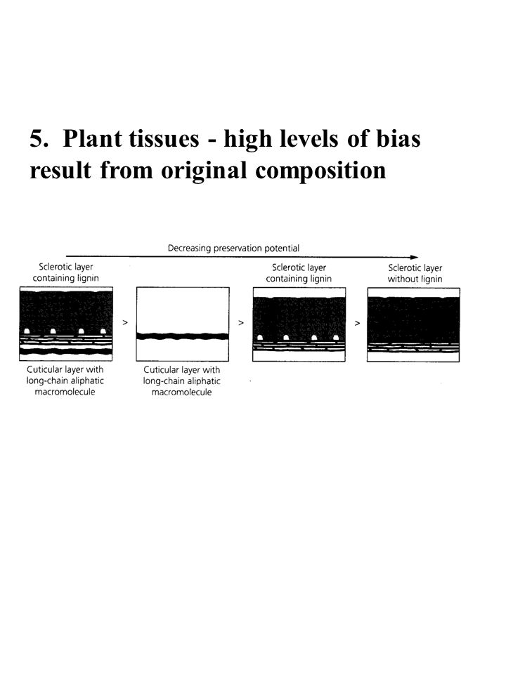 5. Plant tissues - high levels of bias result from original composition