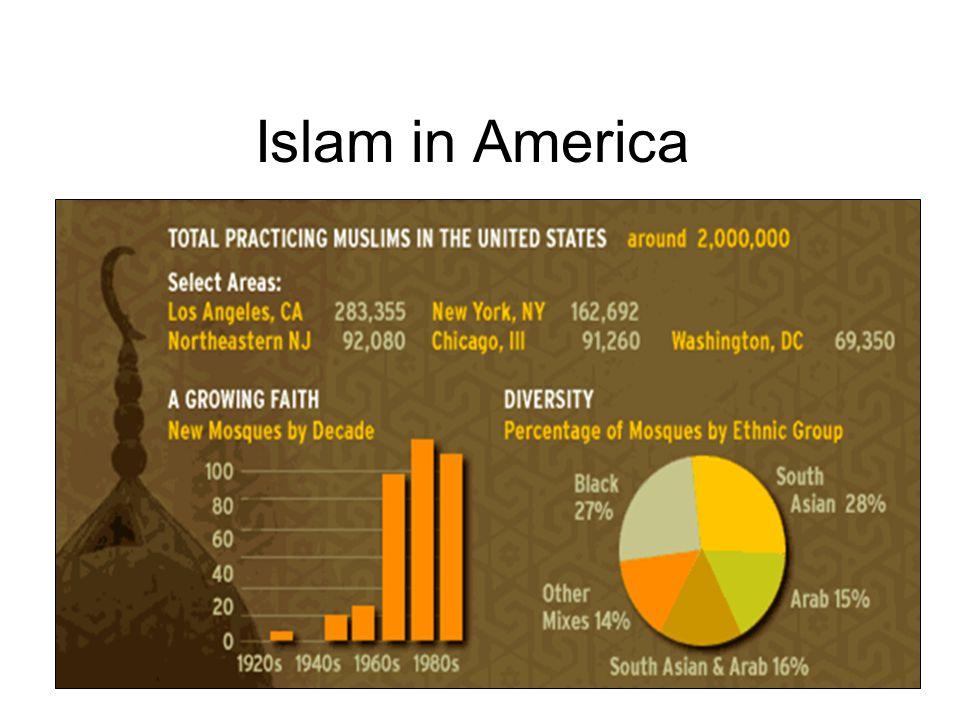 Islam in America
