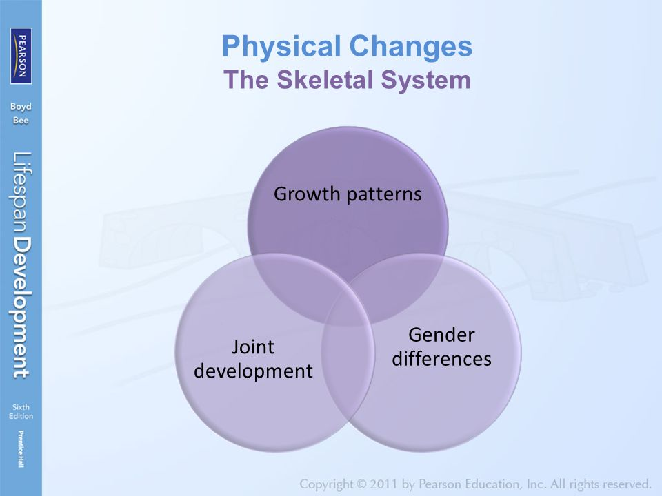 Physical Changes The Skeletal System Growth patterns Gender differences Joint development
