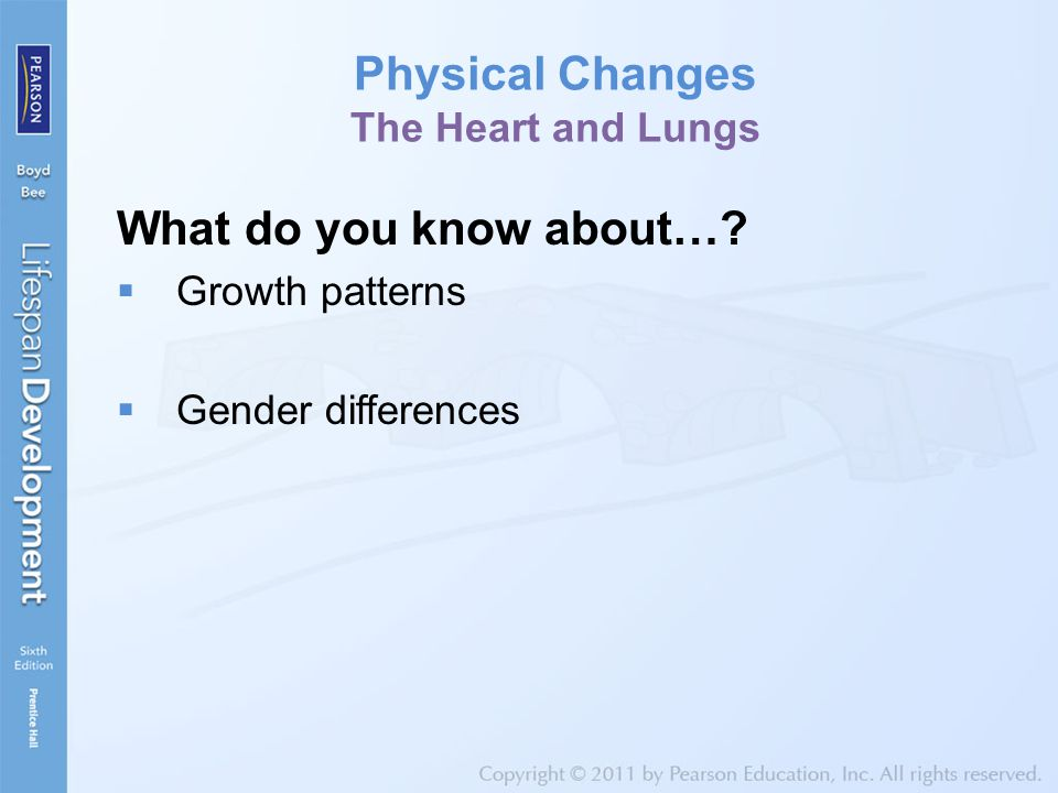 Physical Changes The Heart and Lungs What do you know about…?  Growth patterns  Gender differences