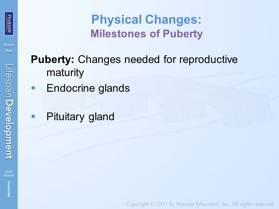 Physical Changes: Milestones of Puberty Puberty: Changes needed for reproductive maturity  Endocrine glands  Pituitary gland
