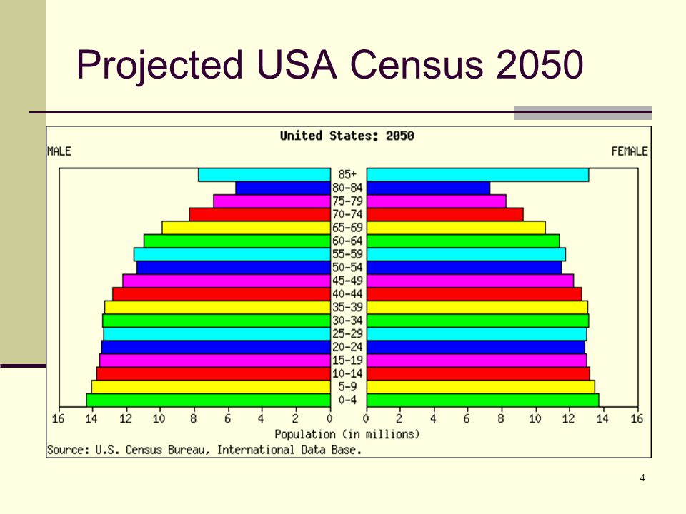 4 Projected USA Census 2050