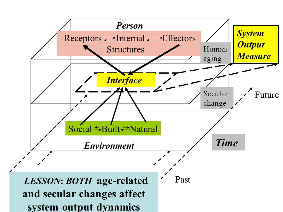 Environment Person Social Built Natural Receptors Internal Effectors Structures Interface Future Past Time Human aging Secular change System Output Measure LESSON: BOTH age-related and secular changes affect system output dynamics