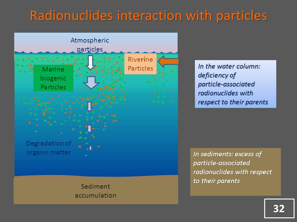 Atmospheric particles Riverine Particles Marine biogenic Particles Degradation of organic matter Sediment accumulation In the water column: deficiency of particle-associated radionuclides with respect to their parents In sediments: excess of particle-associated radionuclides with respect to their parents Radionuclides interaction with particles 32