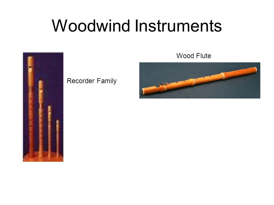 Woodwind Instruments Recorder Family Wood Flute