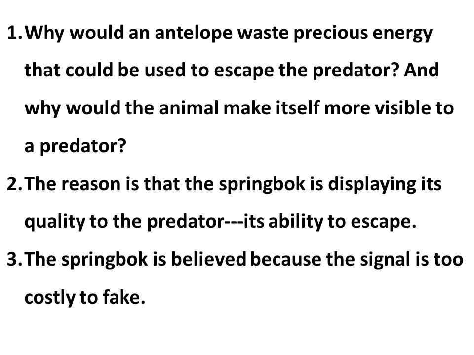 1.Why would an antelope waste precious energy that could be used to escape the predator? And why would the animal make itself more visible to a predat