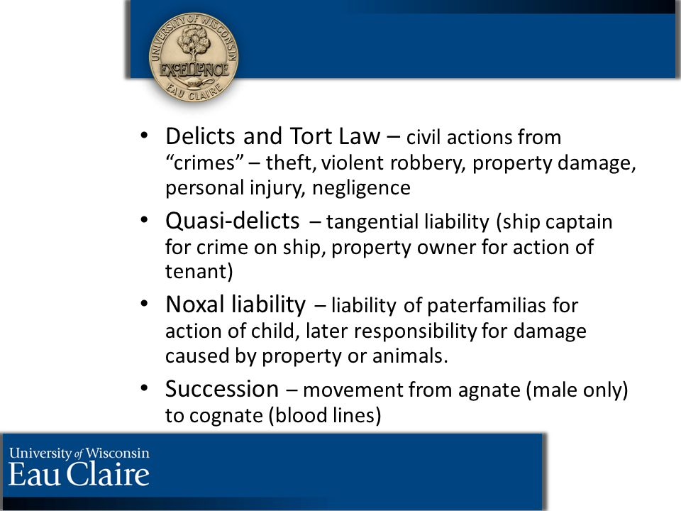 "Delicts and Tort Law – civil actions from ""crimes"" – theft, violent robbery, property damage, personal injury, negligence Quasi-delicts – tangential l"