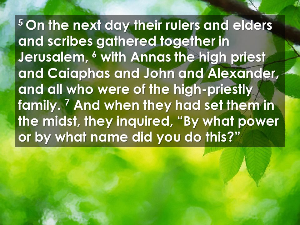 5 On the next day their rulers and elders and scribes gathered together in Jerusalem, 6 with Annas the high priest and Caiaphas and John and Alexander, and all who were of the high-priestly family.