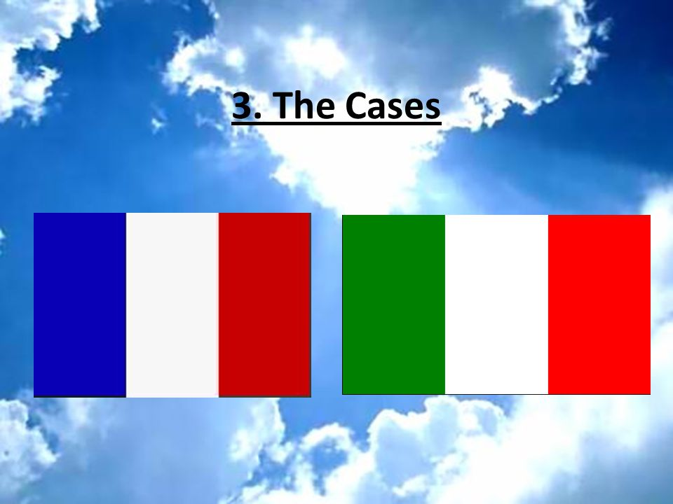 3. The Cases