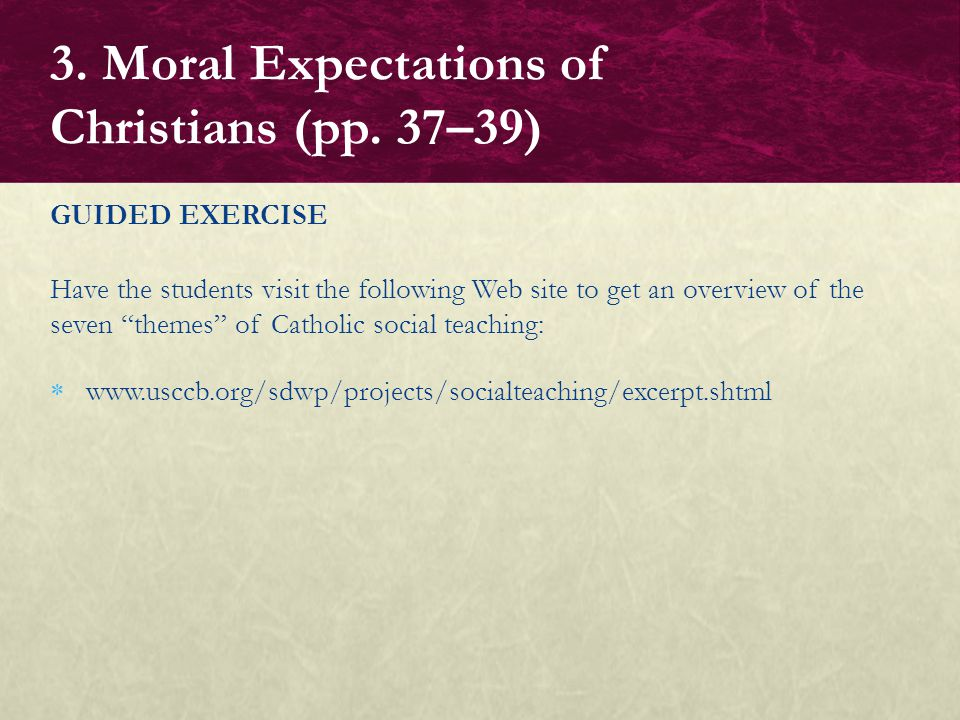"GUIDED EXERCISE Have the students visit the following Web site to get an overview of the seven ""themes"" of Catholic social teaching:  www.usccb.org/s"