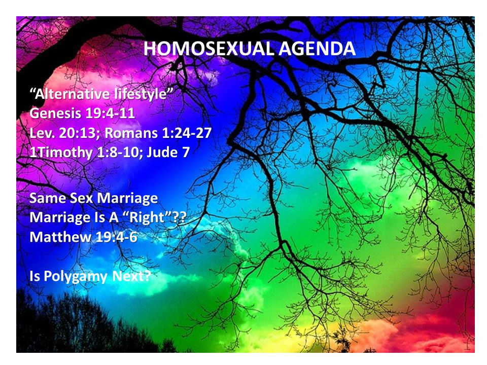 HOMOSEXUAL AGENDA Alternative lifestyle Genesis 19:4-11 Lev.