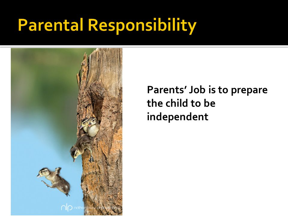 Parents' Job is to prepare the child to be independent