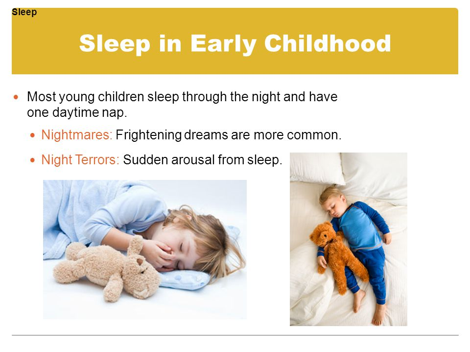 Sleep in Early Childhood Most young children sleep through the night and have one daytime nap. Nightmares: Frightening dreams are more common. Night T