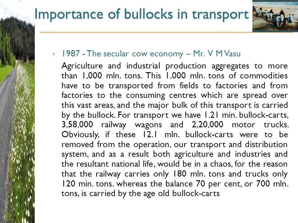 Importance of bullocks in transport 1987 - The secular cow economy – Mr.