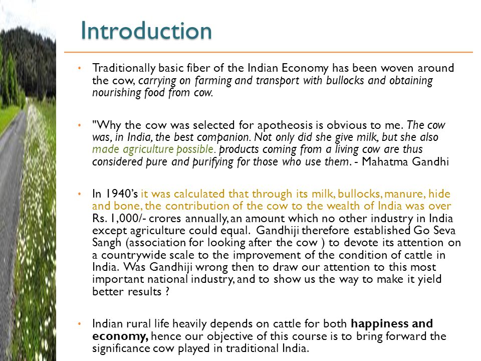 Introduction Traditionally basic fiber of the Indian Economy has been woven around the cow, carrying on farming and transport with bullocks and obtaining nourishing food from cow.