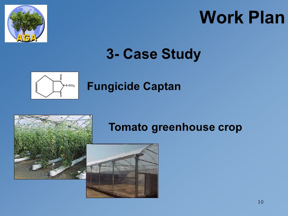 10 3- Case Study Work Plan Fungicide Captan Tomato greenhouse crop