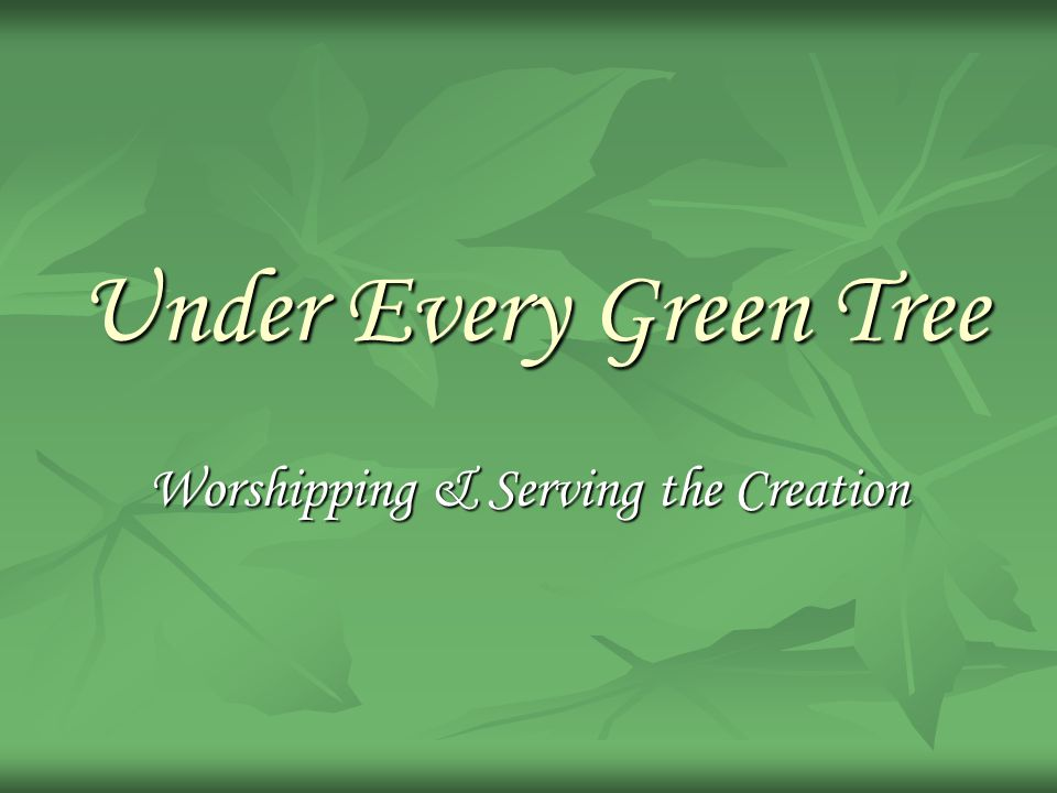 Under Every Green Tree Worshipping & Serving the Creation