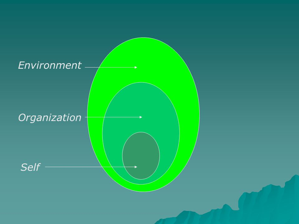 Self Organization Environment