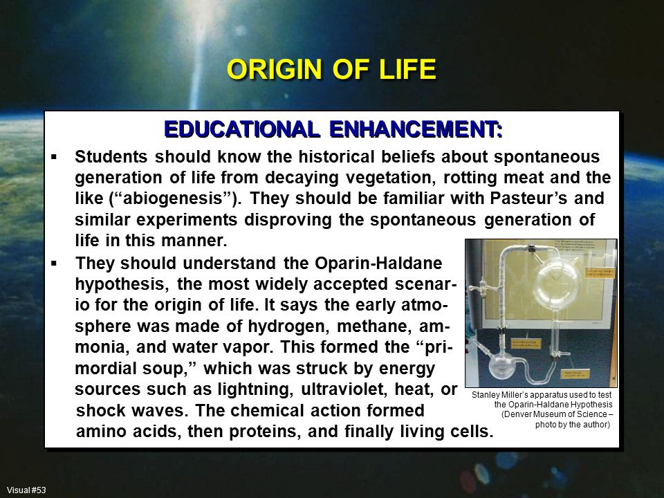 Students should know the historical beliefs about spontaneous generation of life from decaying vegetation, rotting meat and the like ( abiogenesis ).