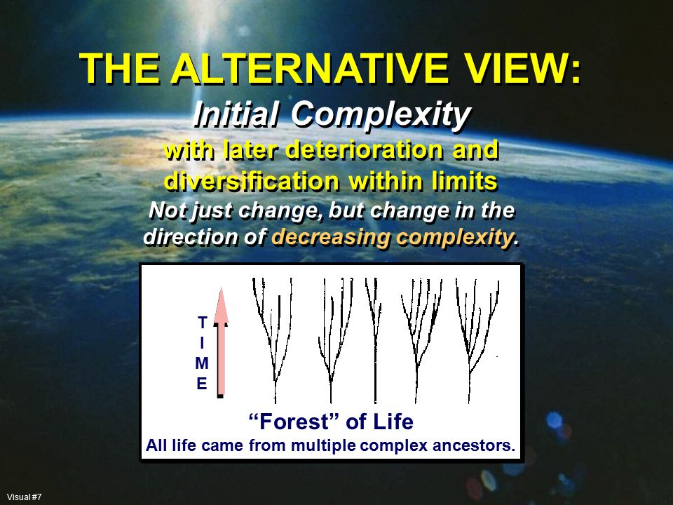 CONTRASTING VIEWS OF INITIAL COMPLEXITY: The Young-Earth View – The beginning of the earth may have been within the last 10,000 years The Old-Earth View – The process was completed millions or billions of years ago Both are forms of Intelligent Design.